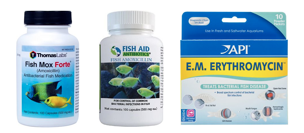 Three examples of fish antibiotics products sold online