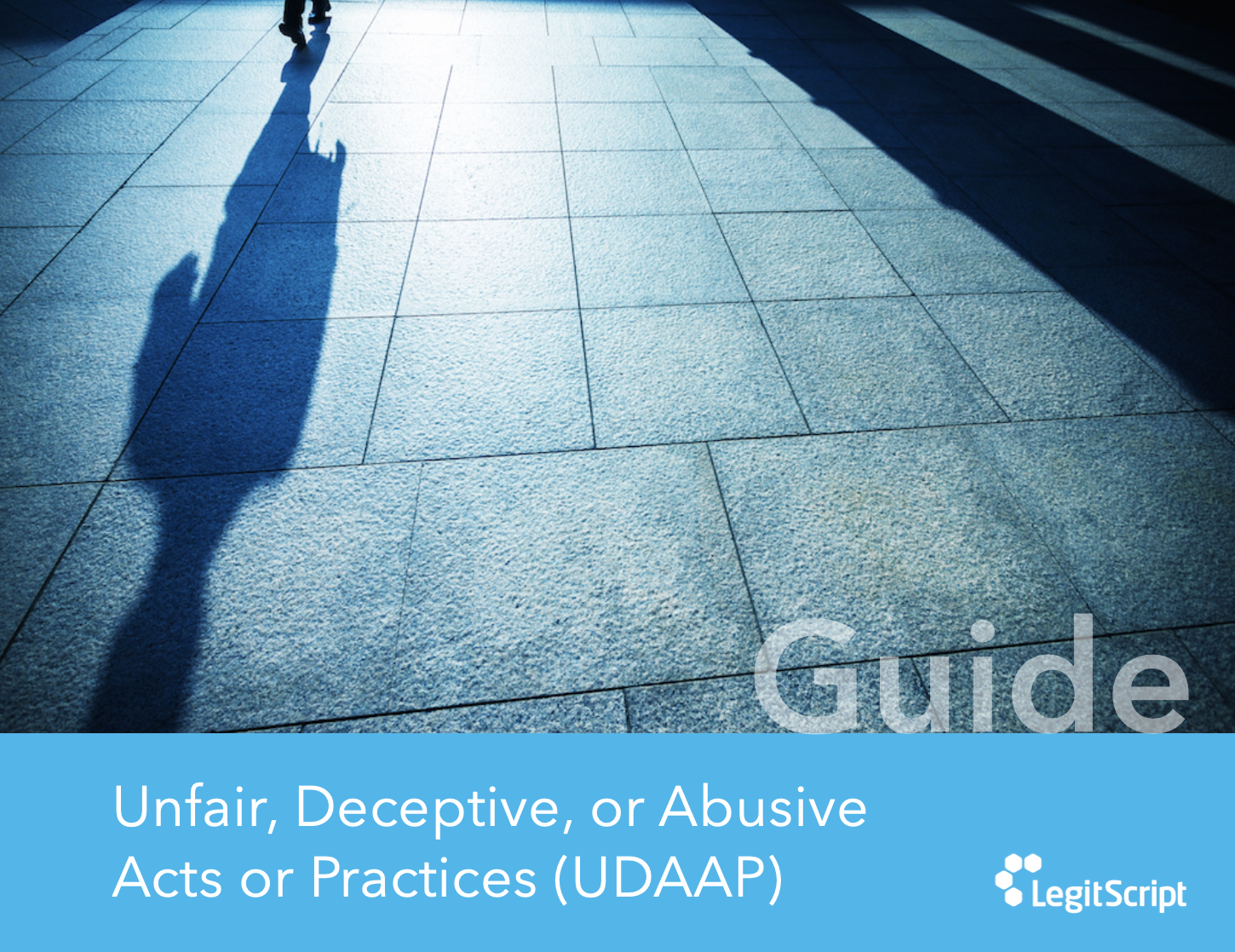 cover of UDAAP guide