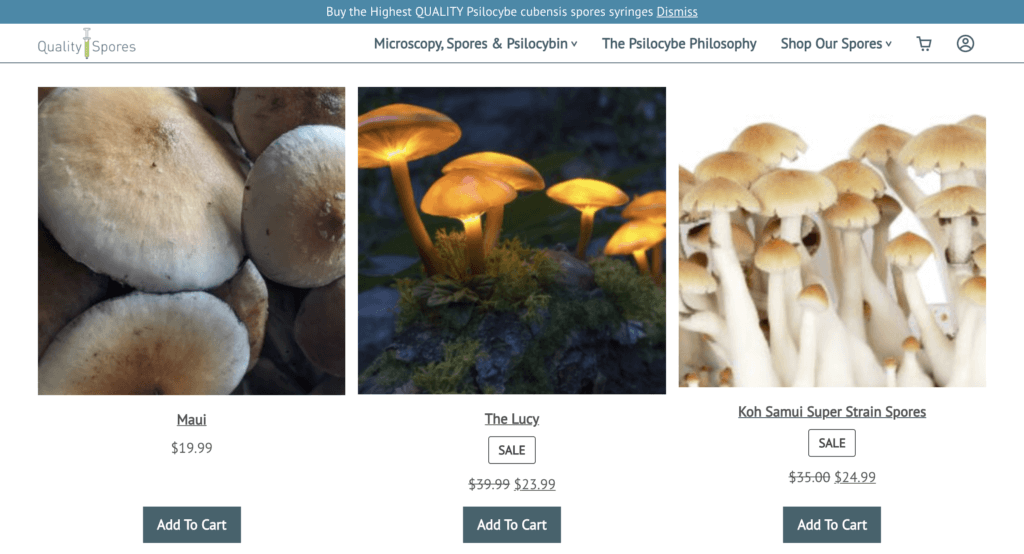 pictures of magic mushrooms for sale